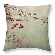 Seeds Of Fall Throw Pillow