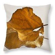 Seeing Double Autumn Leaf  Throw Pillow
