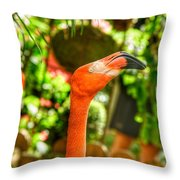 Seeing Double Throw Pillow