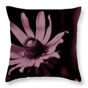 Seeing Life Through Rose-colored Glasses Throw Pillow
