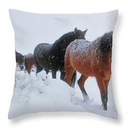 Seeking Shelter From The Storm  Throw Pillow