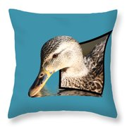 Seeking Water Throw Pillow by Shane Bechler