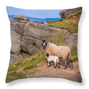 Seep And Lamb Throw Pillow