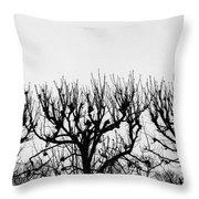 Seine River Trees Throw Pillow