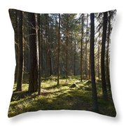 Seitseminen National Park Throw Pillow
