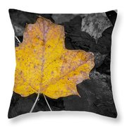 Selective Color Leaf Throw Pillow