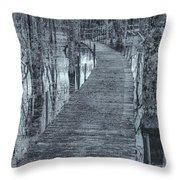 Selenium Boardwalk  Throw Pillow