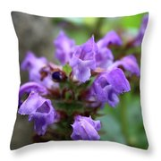 Selfheal Up Close Throw Pillow
