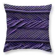 Sem Of Common Grackle Feather Throw Pillow