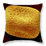 Sem Of Nasturtium Pollen Throw Pillow