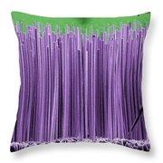 Semiconductor Nanowires, Sem Throw Pillow