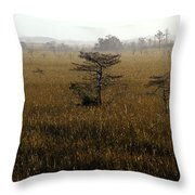 Seminole Morning Throw Pillow