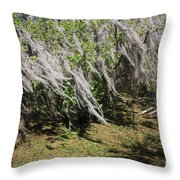 Seminole Wind Throw Pillow