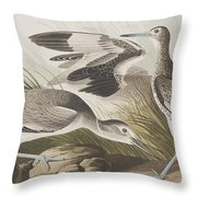 Semipalmated Snipe Or Willet Throw Pillow