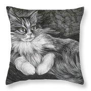 Semona Throw Pillow
