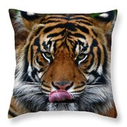 Send More Tourists Throw Pillow