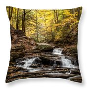 Seneca Falls Throw Pillow
