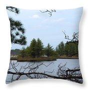 Seney Islands Throw Pillow