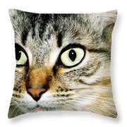 Senorita Verdita.  Throw Pillow