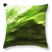 Sensations Throw Pillow