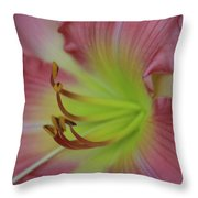 Sensual Pink Lilly Throw Pillow