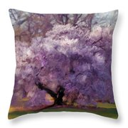 Sensual Secrets Where Passion Blooms Throw Pillow