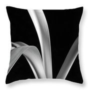 Sensuous Amaryllis Leaves Throw Pillow