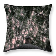 Sentinel Throw Pillow by Eikoni Images