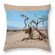 Sentinel Of The Dunes Throw Pillow
