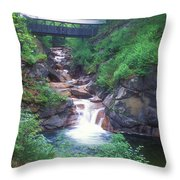 Sentinel Pine Bridge Flume Gorge Throw Pillow