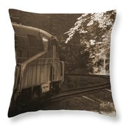 Sepia Cheat Mountain Salamander 2 Throw Pillow