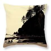 Sepia High Contrast Rialto Beach Throw Pillow