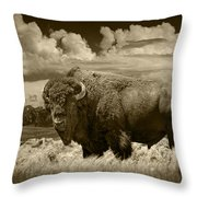 Sepia Toned Photograph Of An American Buffalo Throw Pillow