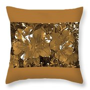 Sepia Toned Pink Bevy Of Beauties In Grayscale Throw Pillow