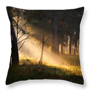September Impressions Throw Pillow by Rosario Piazza