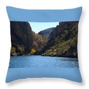 Sequaro Lake Throw Pillow