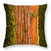 Sequoia Abstract Throw Pillow