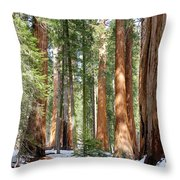 Sequoia Forest Throw Pillow
