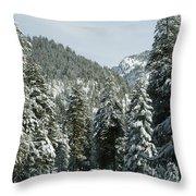 Sequoia National Park 7 Throw Pillow