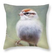 Serendipitous Sparrow  Throw Pillow