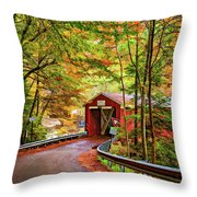 Serendipity Painted Throw Pillow