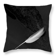 Serene Detail Throw Pillow