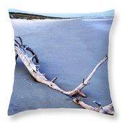 Serene Horizon Throw Pillow
