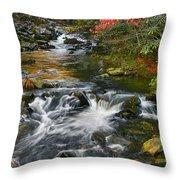 Serene Mountain Stream Throw Pillow