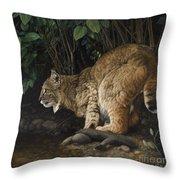 Serene Splendor Throw Pillow