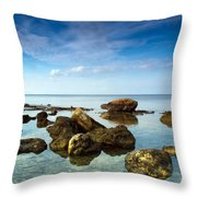Serene Throw Pillow by Stelios Kleanthous