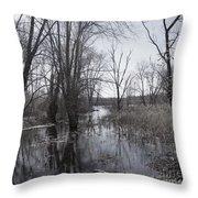 Serene Swampy River Throw Pillow