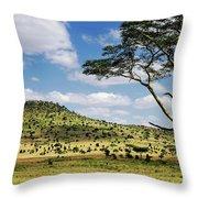 Serengeti Classic Throw Pillow