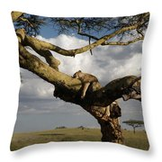 Serengeti Dreams Throw Pillow