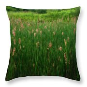 Serenity In Nature Throw Pillow